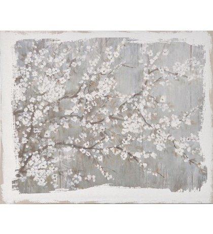 Den White Blossom Picture