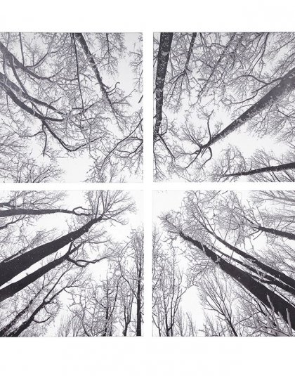Brighten up your room with this Trees Modern Wall Art Print. A great addition to a clean and contemporary design. Dimensions: H: 1600mm W: 1600mm