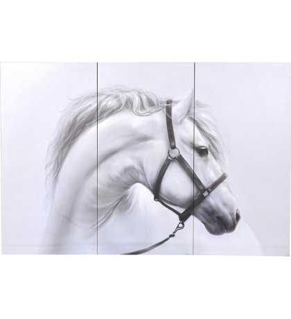 This beautiful White Horse Triple Picture is sure to brighten up any living room setting. Product Information: Dimensions: H: 1200mm W: 1800mm